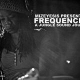 Mizeyesis pres: Frequencies: A Jungle Sound Journey (2011)
