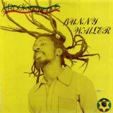 Bunny Wailer - Rock 'N' Groove (Solomonic JA 1981 LP)