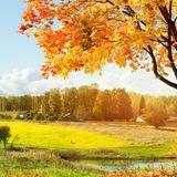 ANDREW BLiKSEM — Nature of land