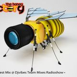 I Love Techno by THF Juny 2013 Guest Mix for djvibes radio