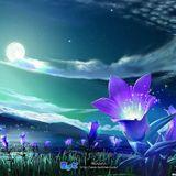 Ben Töne - Mondlichter