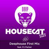 Deep House Cat Show - Deephouse First Mix - feat. PJ Parker