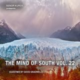 The Mind Of South Volume 22 - GUESTMIX BY DAVID GRADWELL
