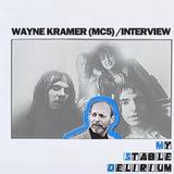 Wayne Kramer (MC5)