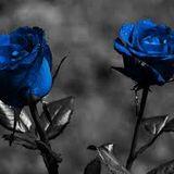 NAS-BLUE ROSE (STAMATELLA RMX)