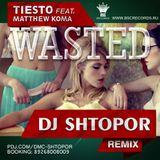 Tiesto feat. Matthew Koma - Wasted (DJ Shtopor Radio Remix)
