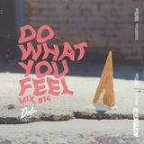 Acrylick x Dolo - Do What You Feel 014