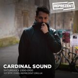 Cardinal Sound w/ Skelecta | 8th July 2017