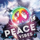 Lullaby for the Pianist (Live@Peace Vibes Festival 05-16)