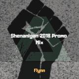 Shenanigan Festival 2018 Promo Mix