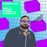 Fengir's Key 19 - datafruits.fm