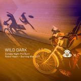 Wild Dark - Robot Heart 10 Year Anniversary - Burning Man 2017