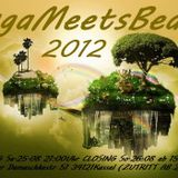 Durchmacher - for buga meets Beats 2012 Promo set (Techno)