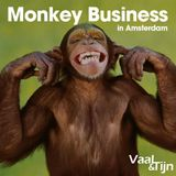 Vaal & Tijn - Monkey Business in Amsterdam