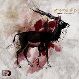 "Zmashed #13 - ""Night Light 3"" by DJ Testa"
