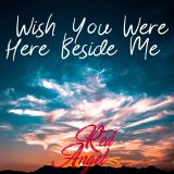 Wish You Were Here Beside Me
