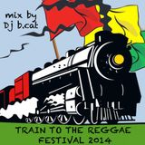 DJ B.CAT-Train to the Reggae Festival 2014