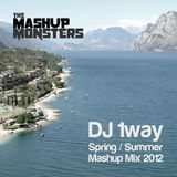 1way Spring / Summer Mashup Mix 2012