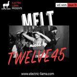 Melt Mix Vol. Won, Issue 18 Mixed By Twelve45