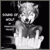 Sound of Wolf...Black Epic Wolf...by Paracelso Project