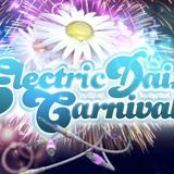 Dimitri Vegas & Like Mike - Live @ Electric Daisy Carnival (Las Vegas) - 09-06-2012
