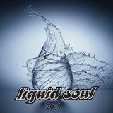 Liquid Soul 2017