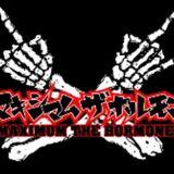 マキシマム ザ ホルモン ONLY ノンストップDJMIX 45m HARAPEKO MIX By DJ Sukemaru