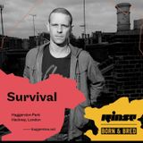 Survival & Visionobi MC (Dispatch) @ Born + Bred Bank Holiday, Haggerston Park Hackney (02.05.2016)