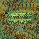 Psychedelic Wonderfuzz #9