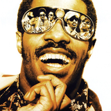 Songs in the Key of Stevie