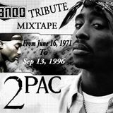 2-PAC TRIBUTE