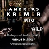 ANDREAS KREMER - Into the Wild - Underground Tekkno DJ Mix - Mixed in 2001 - www.andreaskremer.net