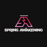 Borgore / Spring Awakening 2015 (Chicago)