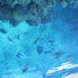 Nightswimming Mixcast - Ep.02