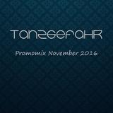 TanzGefahr November Promomix 2016