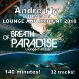 Andre Fly - IDM #105 LOUNGE AND AMBIENT 2018 (13.01.19)