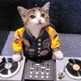 DJing is still fun