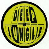 Dj Lighta's Dub to Jungle Show. THURS 7-9pm. Legacy 90.1 FM. DEEP JUNGLE RECORDS Promo. 27.06.19