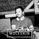 Moleskin // Stefan Mironov