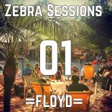 Zebra Sessions 01