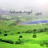 Ambient-Angel (185)