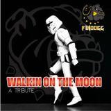 FuiMix- Walkin On The Moon