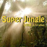 Super Jungle - 李雨寰 & DJ aHao @2008.6 - ageHa Taipei