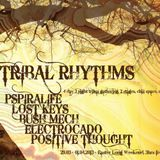 Tribal Rhythms (VibeTribe Stage)