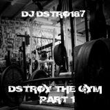 Destroy the Gym vol 1