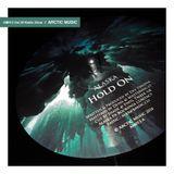 Arctic Music #29 AM013 Radio Show