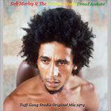 Natty Dread Acetate / Tuff Gong Original Mix (Rare)