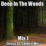 Deep In The Woods Mix 1 (Techno / Tech House Circus DJ Contest Mix)