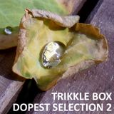 Trikkle Box - Dopest Selection 2 (Vinyl DJ-Mix)