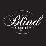 BlindSpot-Mestre/Venice (Mixed & Selected By Walterino)